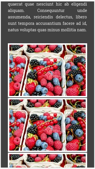 owocowy-szablon_about
